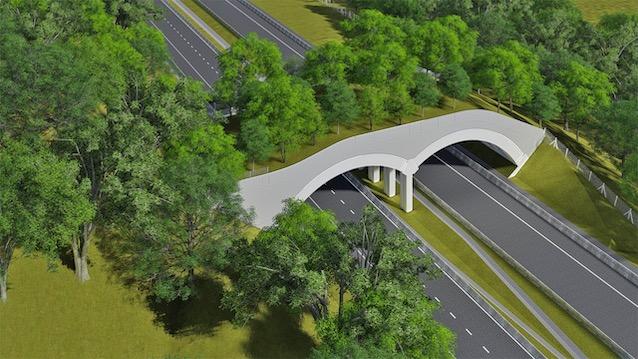 Luiz Ildefonso Simões Lopes | Brookfield Brasil | Arteris Fluminense inicia a construção do primeiro viaduto vegetado em rodovias federais do Brasil
